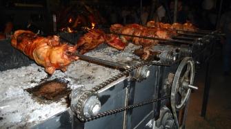 Cerdos en África del Sur.